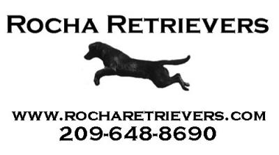 Rocha Retrievers