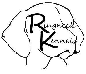 Ringneck Kennels