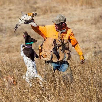 Pheasant Bonanza Hunt Club and Kennel