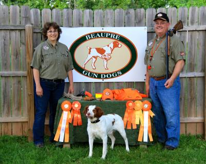 Beaupre's Gun Dogs - Wisconsin Hunt Testing, Pointing, Retrieving